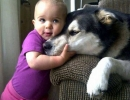 Pure love | 10 Beautiful Baby - Dog Friendships - Tinyme Blog