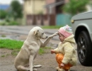 Best friends forever | 10 Beautiful Baby - Dog Friendships - Tinyme Blog