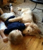 Slumber Party | 10 Beautiful Baby - Dog Friendships - Tinyme Blog