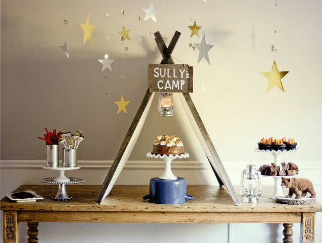 10 Cool Camp Party Ideas Tinyme Blog