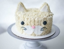 Sweet and cute frosted cat | 10 Crazily Creative Cakes - Tinyme Blog