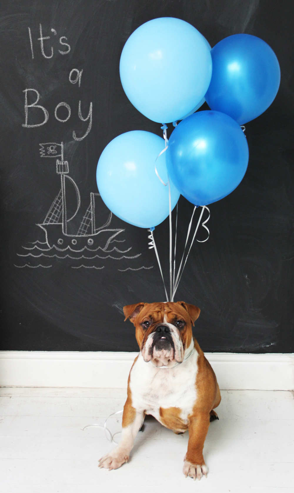 10 Creative Gender Reveal Ideas Tinyme Blog – Baby Boy Announcements Ideas