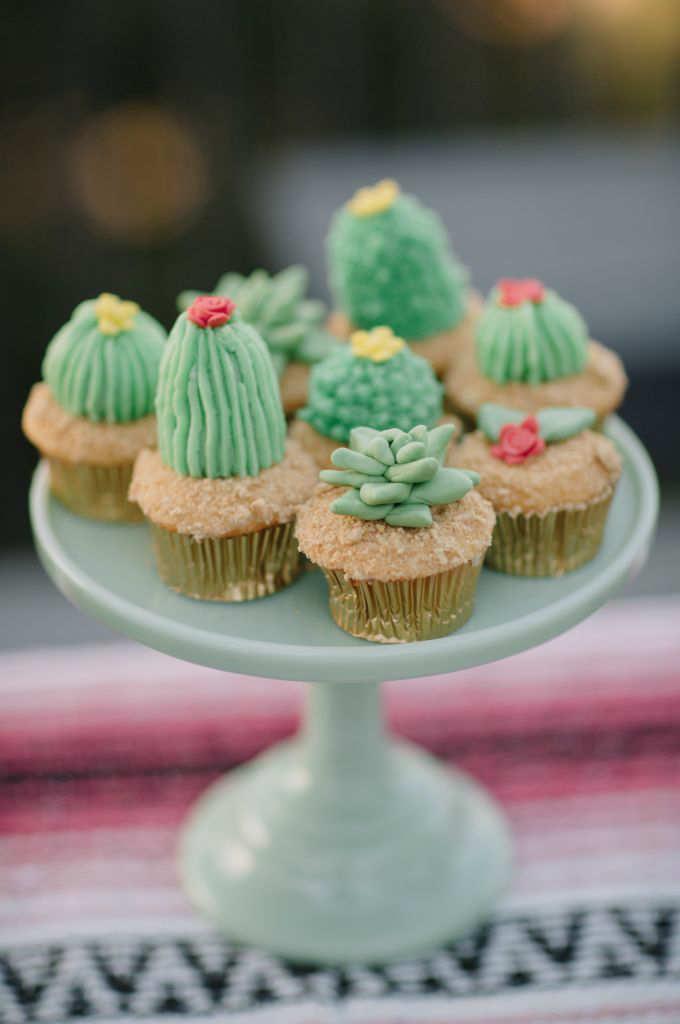 10 Cute Cactus Diys Tinyme Blog