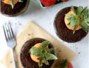 Cute Garden Carrot Cupcakes | - Tinyme Blog