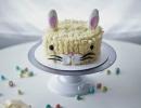 Easter Bunny Cake | - Tinyme Blog