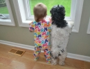 Too-cute window watching | 10 Funny Toddler Moments - Tinyme Blog