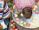 Bobbing for apples | 10 Kids Party Activities - Tinyme Blog
