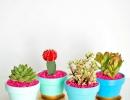 DIY gold dipped plant pots | 10 Kids Summer Activities + Crafts - Tinyme Blog