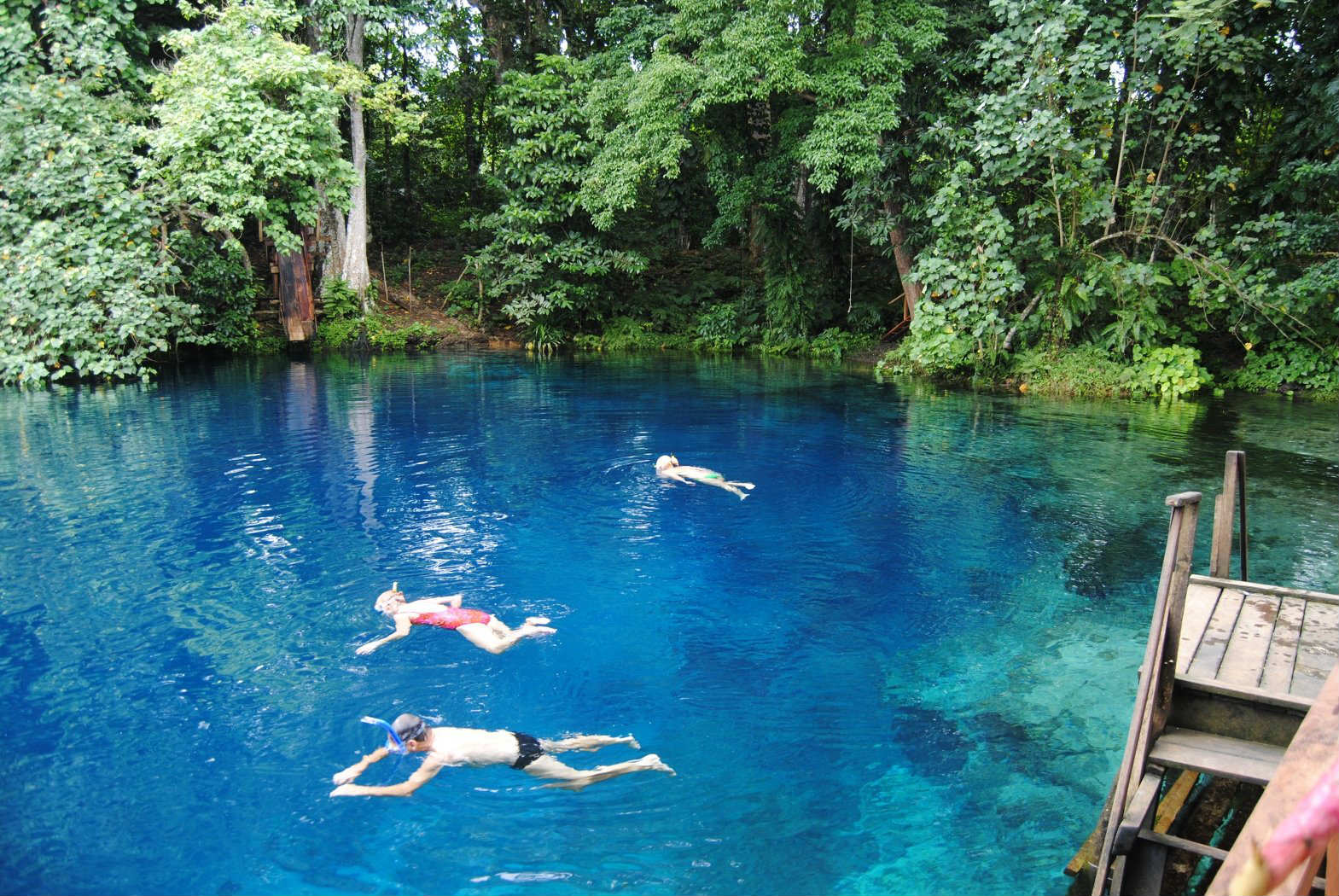 10 Natural Swimming Pools Tinyme Blog