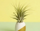 Adorable dipped pineapple ornament | 10 Playful Pineapple DIY's - Tinyme Blog