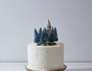 Absolutely stunning and magical | 10 Wintery Christmas Cakes - Tinyme Blog